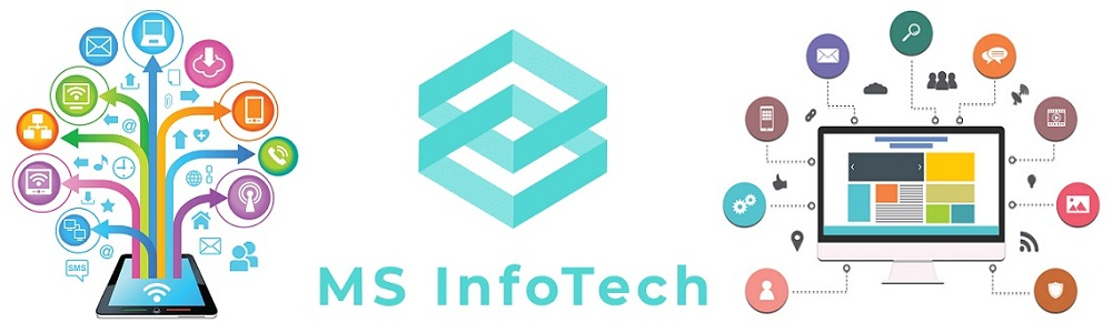 Group of Company in Bangladesh; MS Infotech