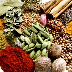 Spices importer in Bangladesh